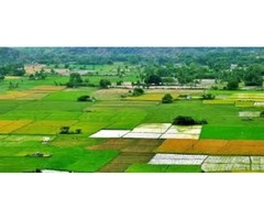 Commercial properties for sale in Kerala state,India