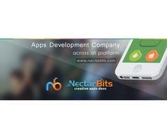 Best Web Application Development Company