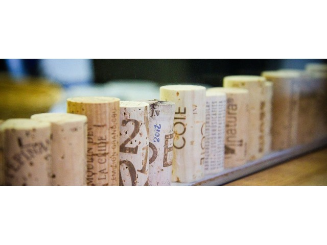The real fact of cork use and why its unique | free-classifieds-usa.com