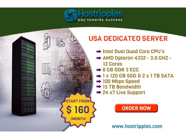 $160  USA Dedicated Server plans of Hostripples with Best Features.   free-classifieds-usa.com