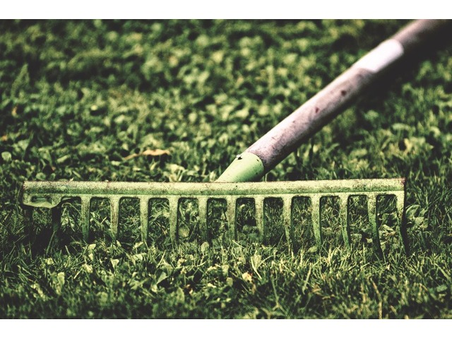 Reliable Lawn Maintenance Services Deltona FL | free-classifieds-usa.com
