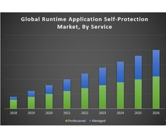 Global Runtime Application Self-Protection Market
