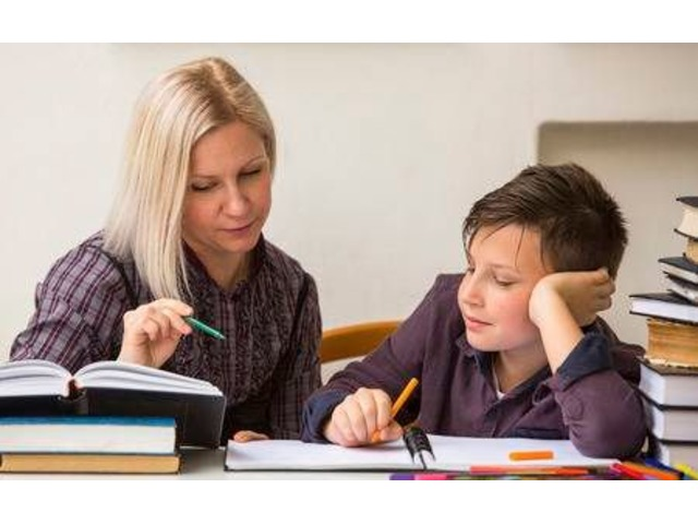 Club Z! Home Tutoring! Private Tutoring service  Westchester  | free-classifieds-usa.com
