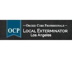 OCP Bed Bug Exterminator Los Angeles CA - Bed Bug Removal