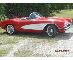 1961 Chevrolet Corvette Vinyl