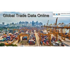 Why business traders wants Global Trade Data Online for Foreign Trading?