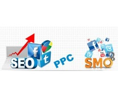 Top SEO Company in USA