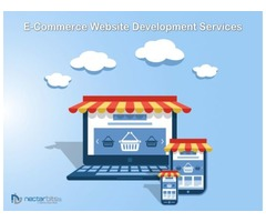 Do you want to make custom online eCommerce stores for your business?