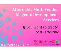 Affordable Multi Vendor Magento Development Services