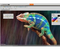Which is the best photo editing software for Mac?