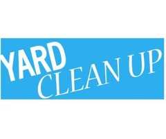 Clean yard at Discount Services