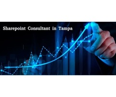 Hire a Sharepoint Consultant in Tampa