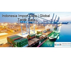 Customs Indonesia Import Export Data: An Effective Way to Expand your Foreign Trade