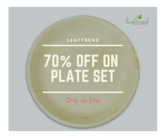 Best Alternative to Plastic Plates