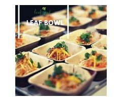 Biodegradable Palm Leaf Bowl | free-classifieds-usa.com