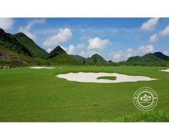 BRG KIngs Island Golf Resort Hanoi Best Golf Courses Play Golf in Hanoi