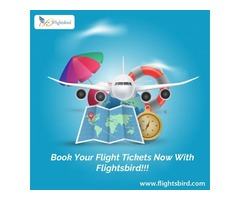 Search and Book PHL to Miami Flights with flightsbird