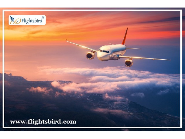 Search and Book Cheap Flights from Detroit to Atlanta | free-classifieds-usa.com