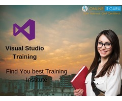 Visual Studio Training | Dot net online Training | onlineitguru
