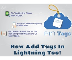 Cloudanalogy salesforce Pin Tags & Drag n Drop App