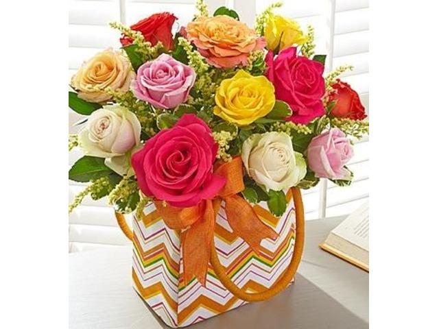 Florist Jacksonville - Spencers Jacksonville Florist FL | free-classifieds-usa.com