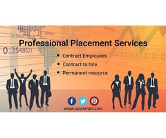 Professional Placement Service | free-classifieds-usa.com