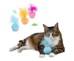 Cat Tumbler Toy