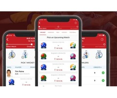 Invest in Fantasy Sports software development services | Appinop | free-classifieds-usa.com
