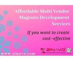 Affordable Magento Multivendor Development Services