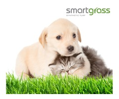 Buy Quality Artificial Grass For Pets at a cost-effective price