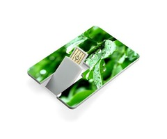 Order Custom Flash Drives at Wholesale Price