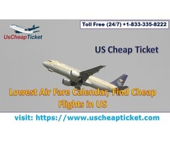Get The Cheapest Flights to Florida Today