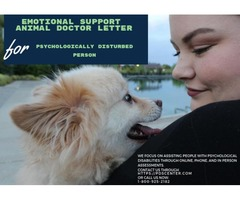 Get your emotional support animal letter online from PDSCENTER