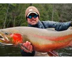 Michigan Steelhead- Top Angling Destinations All around Best in the World
