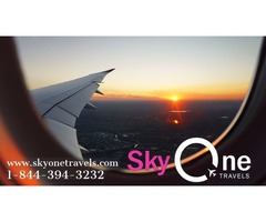 Best flight and hotel bookings in affordable price with Sky One Travels