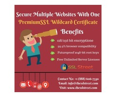 Premium Secure SSL Wildcard Certificate Saves you Money and Time. Buy Now!