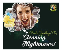 Say Goodbye to your Cleaning Worries with Greenforce