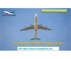 Stay Carefree About Flight Price & Explore Chicago with Ease