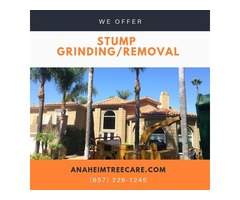 Stump removal Orange County