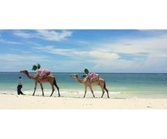 Book Beach holidays in Kenya At Best Camping Tours & Safaris
