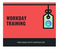 Workday HCM Training and Certification course with live Projects -  Free Demo | free-classifieds-usa.com