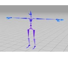 Custom 3D Human Character Animations