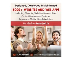 SMBs-Partner with Top Web Development Company