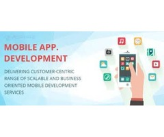 Application Development Services in USA - peopletechcrop
