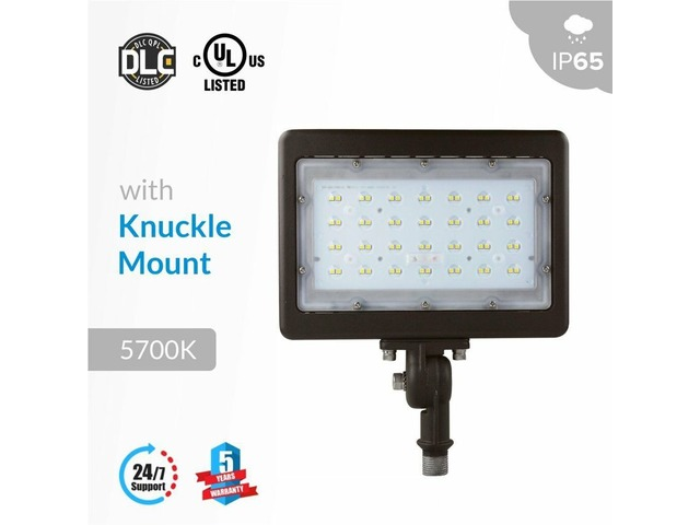 Install 50W LED Flood Lights In Your Garden To Enjoy Blissful Evenings | free-classifieds-usa.com