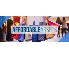 AFFORDABLE ASSETS || eBay Stores | free-classifieds-usa.com