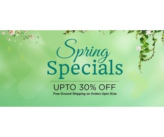 Spring Special Deals Get Upto 30% Off on all Computer Components