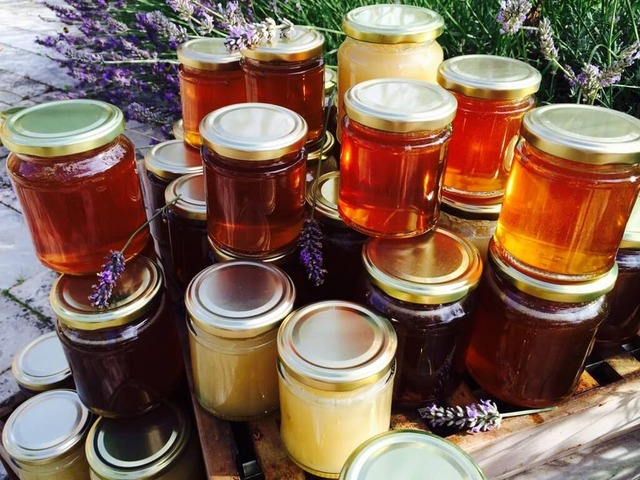 All kinds of bee honey from all over the world | free-classifieds-usa.com