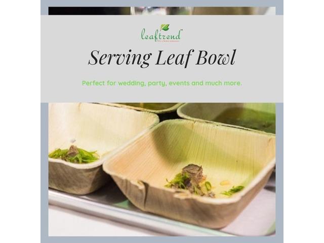 Leaftrend Compostable Dinnerware   free-classifieds-usa.com