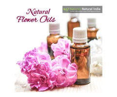 Let NaturesnaturalIndia.com Help you Find the Best Natural Oil or Products Online!